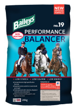 Bag of Baileys Performance Balancer