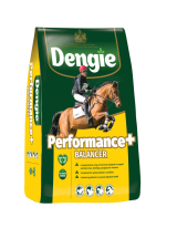 Bag of Dengie Performance Balancer