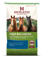 Bag of Heygates Equibalancer