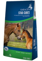 Bag of Saracen Stud Cubes