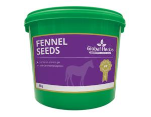 Tub of Global Herbs Fennel Seeds