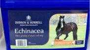 Tub of Dodson & Horrell Echinacea